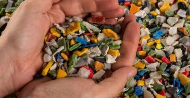 Study finds microplastics in all its seafood samples