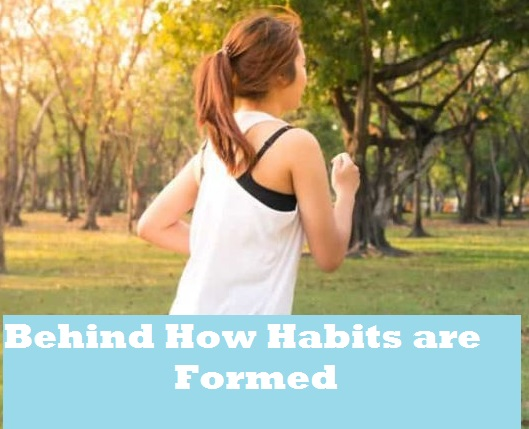 Understanding the Science Behind How Habits are Formed