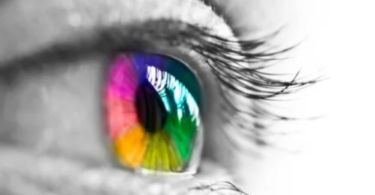 Why our eyes perceive colors changes